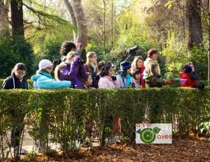 Escolares disfrutando con la presencia de aves en el parque madrileño del Retiro ya ha sido escenario de varias rutas de A ver Aves