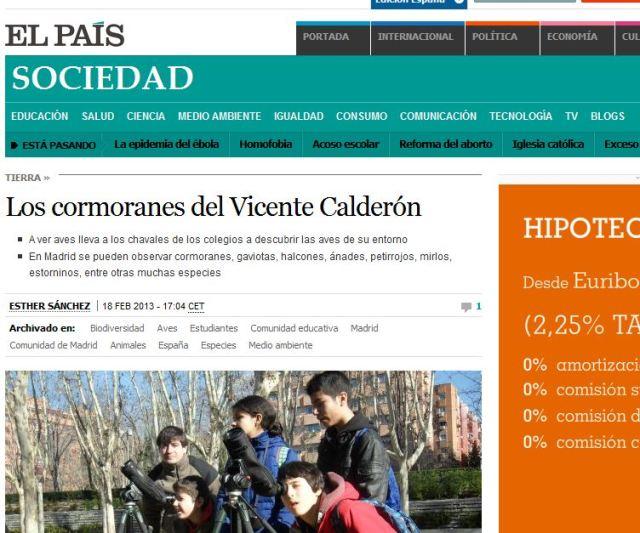 El País. Sociedad: Los cormoranes del Vicente Calderón